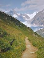path towards Fiescher Gletscher